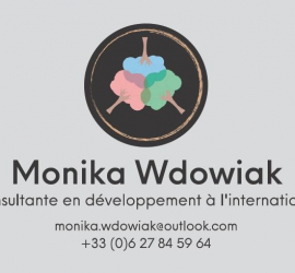DEVELOPPEMENT INTERNATIONAL